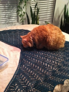 Inspecting my Belle Nuit Shawl…...